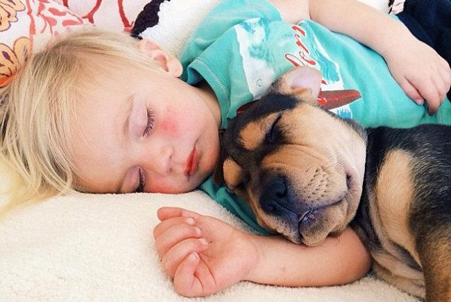Fotos do menino que só dorme com o cãozinho