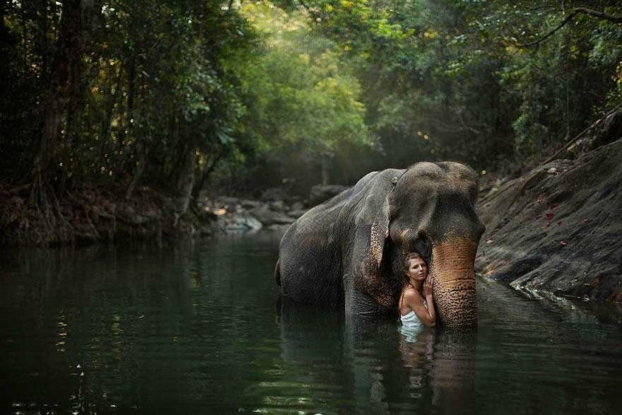 Ela registrou essas fotos impressionantes com animais vivos! 7