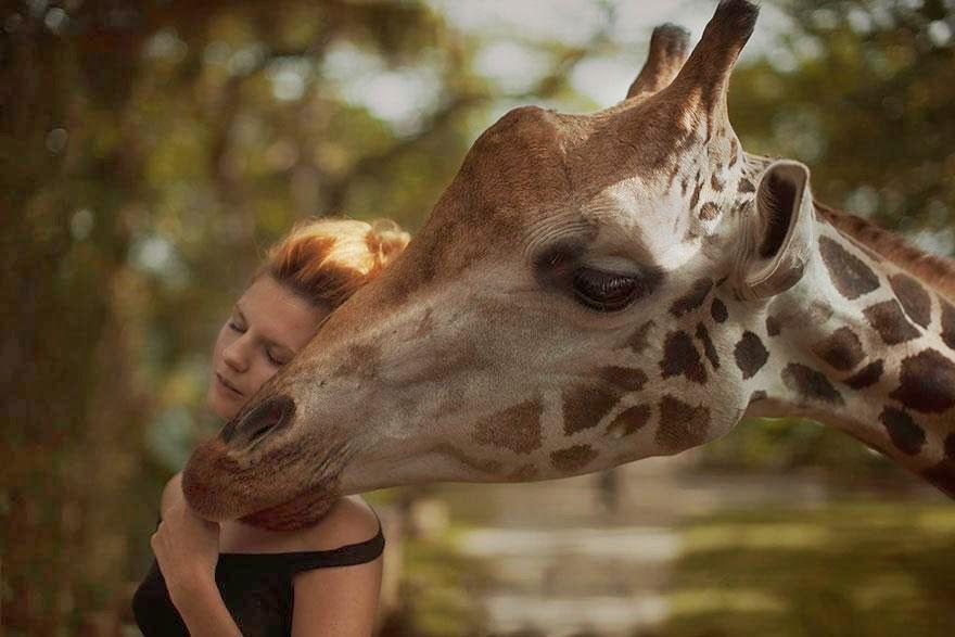 Ela registrou essas fotos impressionantes com animais vivos! 9
