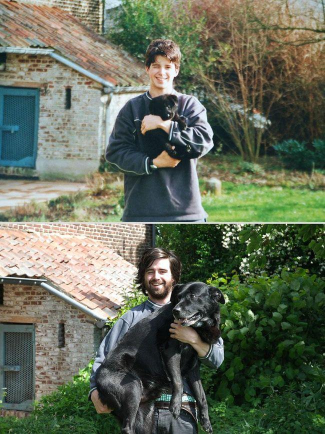awebic-animais-antes-depois-2