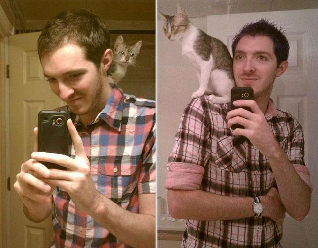 awebic-animais-antes-depois-6
